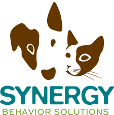 Synergy Behavior Solutions
